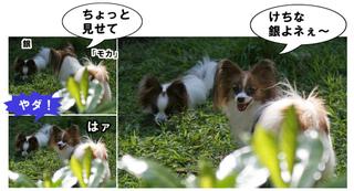 Bulog2011930j