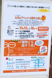 Bulog20111016g