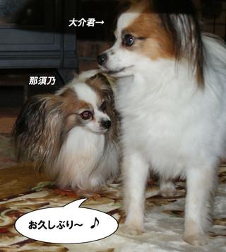 Blog2015917dsc08504