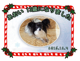 Blog2016124aoi