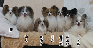 Blog2016124dsc02399