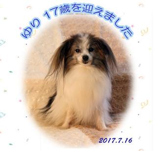 Blog2017716